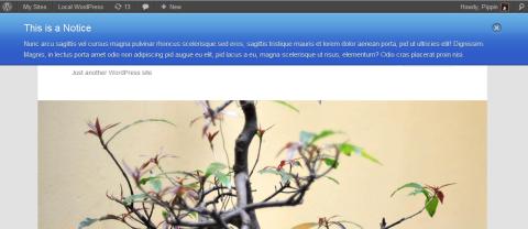 01-screenshot