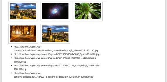 Screen Shot 2013-08-04 at 12.46.25 PM